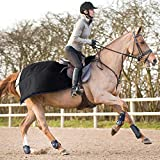 Product review for Horze Avalanche Quarter Sheet Black 81