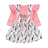 2Pcs Thanksgiving Baby Girls Skirt Set Long Sleeve Ruffle Shirt Suspender Feather Dress Outfit (Pink, 2-3T)