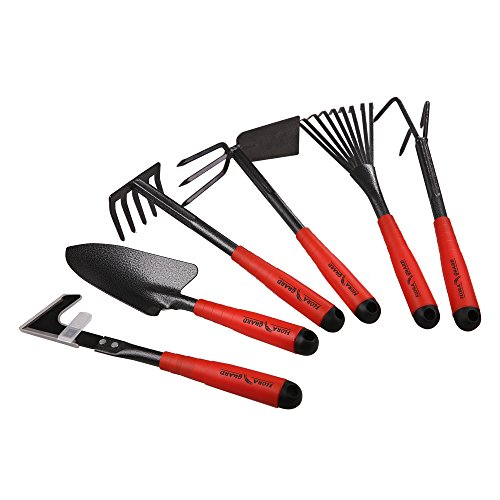 Flora guard gardening tools 6 piece garden tools set for Gardening tools 6 letters