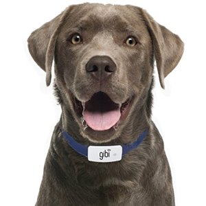 GIBI 2nd Gen Pet GPS Tracker (Locator) to Help Find and Keep Dog/Cat Safe 1