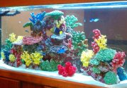 Instant-Reef-DM058-Fish-Tank-Decorations-Aquarium-Dcor-Ornament-Fake-Coral-Reef-Tank-for-Saltwater-Marine-and-Freshwater-Fish
