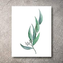 Botanical Prints Wall Decor – Kitchen Art Eucalyptus Leaves Set UNFRAMED Pictures 6 PIECES Nature Floral Plant Flower Green Small Botanical Prints Wall Art Vintage Print looking Poster (5×7)