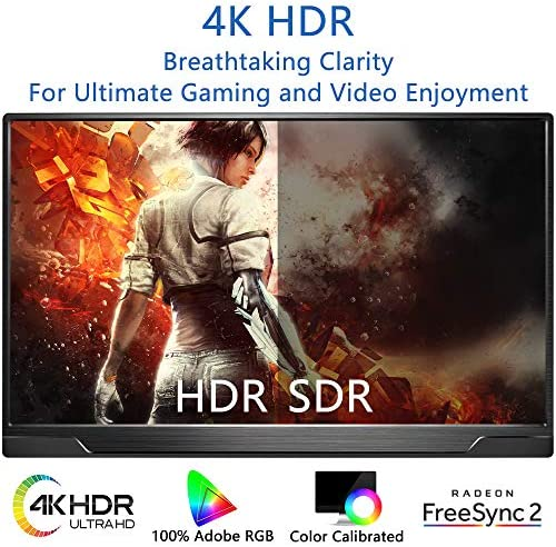 Portable Monitor 4K - 17.3 Inch UHD FreeSync HDR IPS 100% Adobe RGB 3840x2160 Lightweight Eye Care Computer Display with Type-C Mini DP HDMI for Xbox PS4 Switch Laptop PC Phone Mac, with Smart Case 17