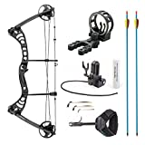 Leader Accessories Compound Bow 30-55lbs Archery Hunting Equipment with Max Speed 296fps (Black with Kit)