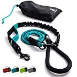 SparklyPets Heavy Duty Rope Leash for Large and Medium Dogs with Anti-Pull Bungee for Shock Absorption - No Slip Reflective Leash for Outside9733; Teal