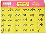 Dowling Magnets DO-733002 Word Family Magnets, 11.25' Wide, 12.5' Length, 0.13' Height (73 Pieces)