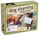 Dog Shaming 2020 Day-to-Day Calendar