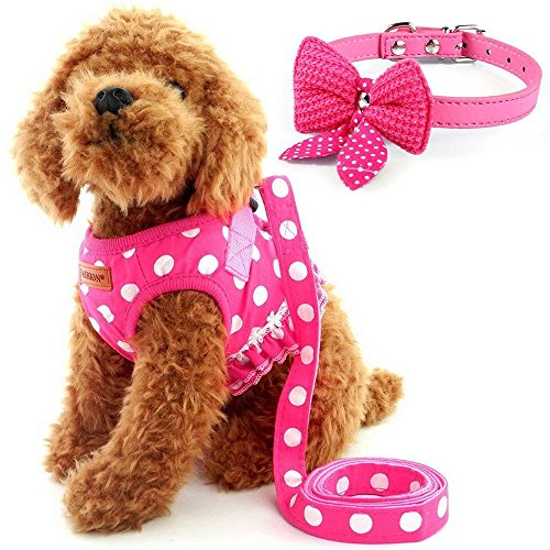 Cute Small Dog Harness, Ladies Polka Dots Dog Vest Harness Set with Pink Leash and Bowknot Collar, 3 in 1 Girl Style Vest Harness Set for Puppy and Cat 1