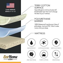 Eco Home USA Premium Mattress Pad Protector – Waterproof & Hypoallergenic Cover – Vinyl Free, Terry Cotton Topper (Queen)