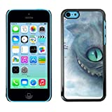 LASTONE PHONE CASE / Slim Protector Hard Shell Cover Case for Apple Iphone 5C / Cat Halloween Grey Eye Kitten