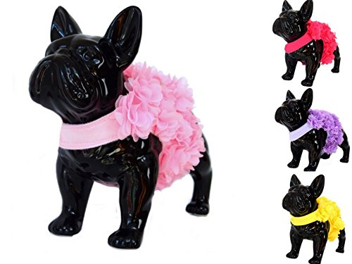 Floral Pink, Purple or Yellow Dog Harness and Leash Set for XSmall & Small Breeds Very Stylish and Cute 1