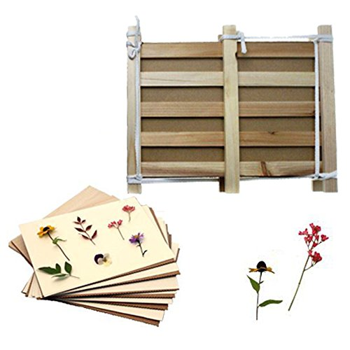 DoerGear Pine Wood Herbarium & Plant & Flower Press Set – DIY Nature Plant Specimens – A Perfect Scientific Study Tool (14