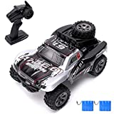 Vinciph RC Cars 2.4Ghz All Terrain High Speed Racing Car 1:18 Scale Off-Road Vehicle Buggy Toy Car,Remote Control Car for Kids Birthday (2pce Battery)