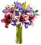 Benchmark Bouquets Stargazer Lilies and Iris, No Vase