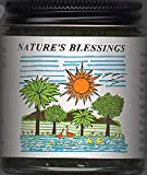 Nature's Blessings Hair Pomade (All Natural Ingredients)