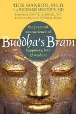 Buddha's Brain book by Rick Hanson
