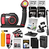 SeaLife DC2000 HD Underwater Digital Camera with Sea Dragon 2500 LED Light Set + 2 64GB Cards + Batteries & Charger + Monopod + Suction Cup + Buoy Kit