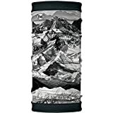 BUFF Unisex Polar Reversible, Mountain Vista, OSFM