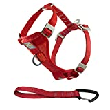 Kurgo Dog Harness   Car Harness for Dogs   Large   RedPet Safety Seat Belt   Certified Crash Tested Harness   Car Seatbelt   Tru-Fit Enhanced Strength Style