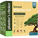 Bonsai Starter Kit - The Complete Growing Kit to Easily Grow 4 Bonsai Trees from Seed + Comprehensive Guide & Bamboo Plant Markers - Unusual Gardening Gifts Ideas for Women - Indoor Bonzai Tree Seeds