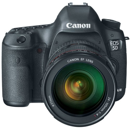 Canon EOS 5D Mark III with EF 24-105mm f/4 L IS USM