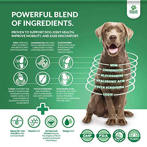Doggie Dailies Glucosamine for Dogs: 225 Soft Chews, Advanced Hip & Joint Supplement for Dogs with Glucosamine, Chondroitin, MSM, Hyaluronic Acid & CoQ10, Premium Joint Relief for Dogs Made in the USA 5