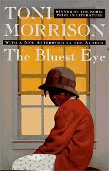 Image result for the bluest eye