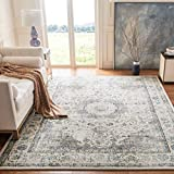 Safavieh Evoke Collection EVK220B Vintage Oriental Grey and Gold Area Rug (3' x 5')