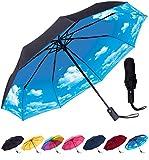 Rain-Mate Compact Travel Umbrella - Windproof, Reinforced Canopy, Ergonomic Handle, Auto Open/Close Multiple Colors (Blue Sky)