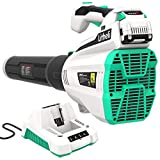 LiTHELi 40V Leaf Blower 480CFM 92MPH with Brushless Motor, 2.5AH Battery and Charger