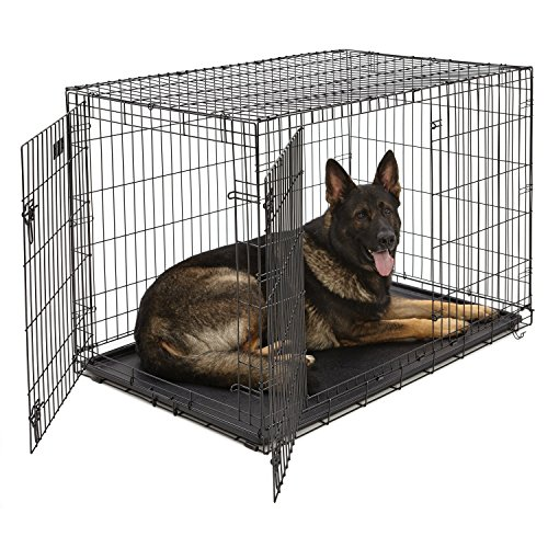 XL Dog Crate | MidWest iCrate Double Door Folding Metal Dog Crate w/Divider Panel, Floor Protecting Feet & Leak-Proof Dog Tray | 48L x 30W x 33H Inches, XL Dog Breed, Black