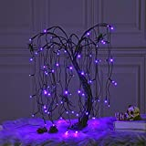 LIGHTSHARE 24-inch Halloween Willow Tree LED Bonsai Night Light,80 LED Lights, Battery Powered or DC Adapter(Included),Purple for Home, Festival,Nativity, Party, and Christmas Decoration,Purple