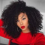 Afro Kinky Curly Human Hair Wig 100% Real Hair Brazilian Hair Glueless Lace Frontal Wigs 180 Density Natural Color from Dream Beauty for women (12', lace frontal wig)