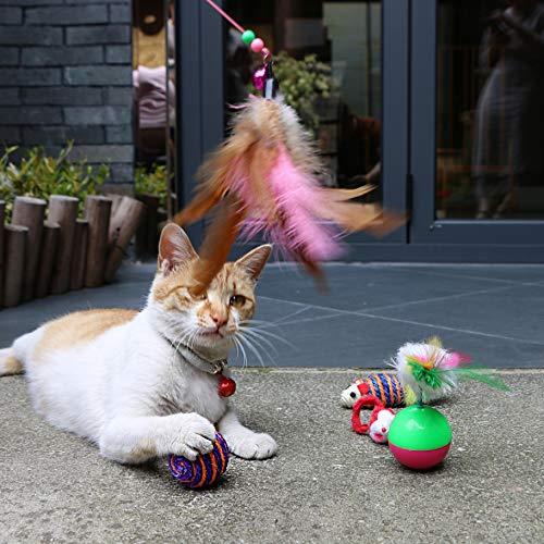 SENYE-PET-16pcs-Cat-Toys-Interactive-Kitten-Toys-Assortments-Cat-Feather-Teaser-Tumbler-Fluffy-Mice-Crinkle-Balls-Bells-for-Cat-Puppy-Kitty