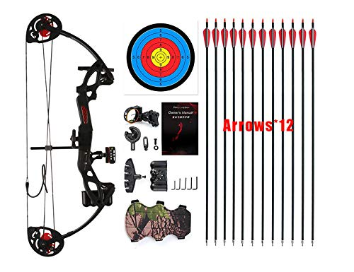 PANDARUS Compound Bow Topoint Archery for Youth and Beginner, Right Handed,19'-28' Draw Length,15-29 Lbs Draw Weight, 260 fps, Package with Archery Hunting Equipment (Black)