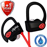 Wireless Headphones w/ 10+ Hours Battery - Exclusive 2019 - Best Workout Earbuds w/Mic - IPX7 Waterproof Bluetooth Sport Earphones - Running Noise Cancelling Gym Music Headset - for Women Men