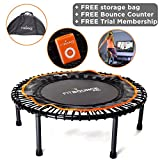 FIT BOUNCE PRO II - Top Seller - Half Folding Very Quiet Bungee Sprung Mini Trampoline Rebounder with DVD, Storage Bag & Bounce counter!