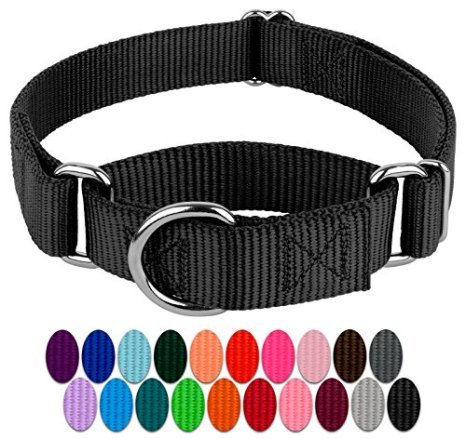 Country-Brook-Design-Martingale-Heavyduty-Nylon-Dog-Collar
