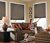 Windowsandgarden Custom Cordless Single Cell Shades, 34W x 46H, Espresso, Any Size from 21' to 72' Wide and 24' to 72' high Available
