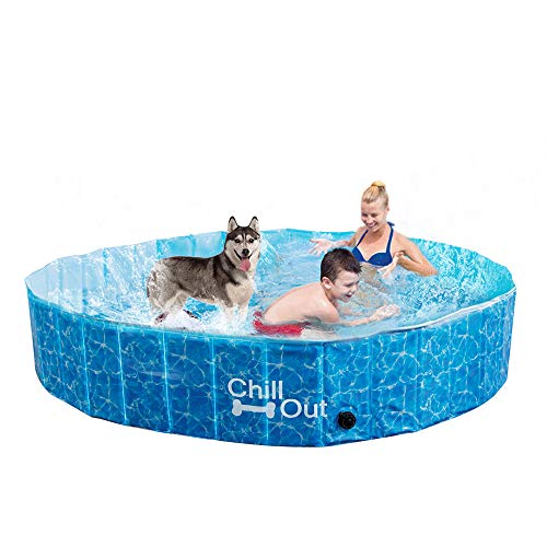 5 Best swimming pool for dogs (2019 Reviews) | Retrievers Are Us