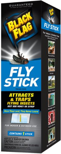 Black Flag Fly Stick Insect Trap, 6-Pack