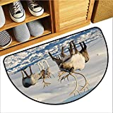 Entrance Door mat Winter Reindeers in Natural Environment Tromso Northern Norway Caribou Antler Wildlife Machine wash/Non-Slip W30 xL18