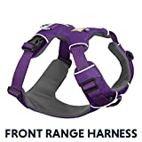 RUFFWEAR All Day Adventure Dog Harness, Medium Breeds, Adjustable Fit, Size: Medium, Tillandsia Purple, Front Range Harness, 30501-501M