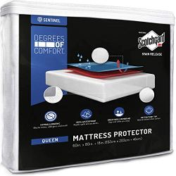 Degrees of Comfort Hypoallergenic Queen Waterproof Mattress Protector | Deep Pocket, Breathable | Premium Fitted Cotton Terry Cover with 3M Scotchgard Stain Release | Urine and Spill Protection- Queen