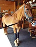 """Product review for ThermaFreeze Equine Wrap-Two(2) Flexible & Reusable Leg Wraps and Four(4) 6x5(12.5""""x15"""") Reusable ThermaFreeze Sheets."""