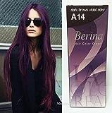 Berina Permanent Hair Dye Color Cream # A14 Dark Brown Violet