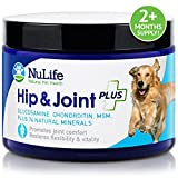 NuLife Hip & Joint Plus 6 oz Powder - Glucosamine for dogs with Chondroitin, MSM & above sea level organic coral calcium - 100% natural nutritional supplement for dogs - Improves hip and joint health - More effective than capsules, liquid & chews - For large & small dogs - 60 day 'Peace of Mind' guarantee!