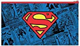 DC Comics Superman Flat Pencil Case