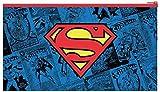 DC Comics Superman Flat Pencil Case