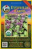 Everwilde Farms - 1000 organic Cinnamon Basil Herb Seeds - Gold Vault Packet